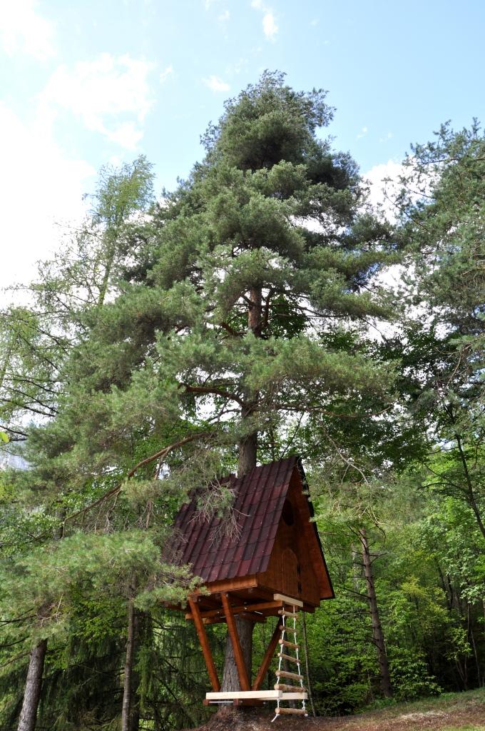 Corso di costruzione della casa sull 39 albero for Planimetrie della casa sull albero